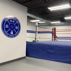 Unlimited Boxing Classes