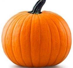 Pumpkin Altar