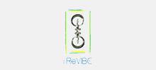 iReVibe LLC