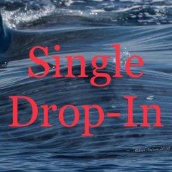 Single Drop In