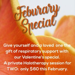 February Special-Salt Therapy/Halotherpy- Private Session for TWO-ONLY $60