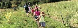 Kids Camp: Wilderness Week (Grades 3-5)
