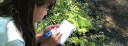 Kids Camp: Art Week (Grades 3-5)