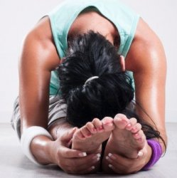 Hive Hot Yoga