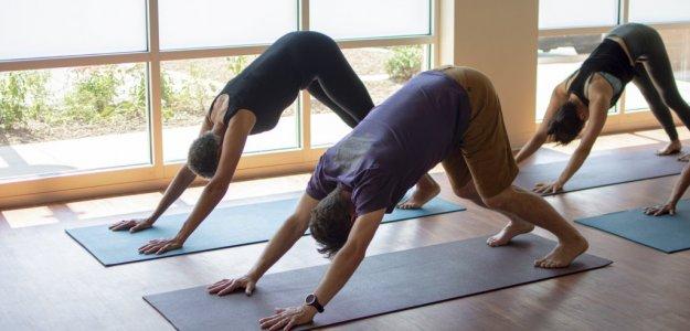 Yoga Studio in Carrboro, NC
