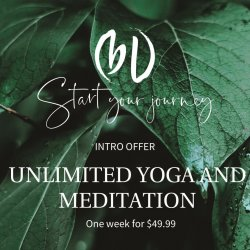 Introduction to Bethany Lee Yoga and Wellness