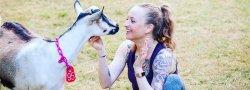 Sunset Goat Yoga at Split Creek Farm