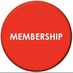 MEMBERSHIP - 12 Sessions / Month