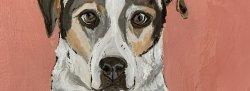 Paint Your Pet | In-Studio Event