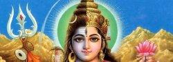 Shiva & Shakti: Balancing the divine energies within