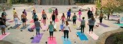 Sunset Yoga at Carolina Wren Park