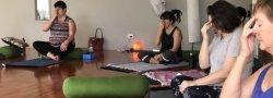 Mind-Body Wellness Retreat
