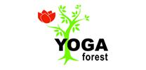 Yoga Studio in Downtown St Croix Falls, WI